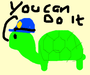 security turtle is here to motivate you