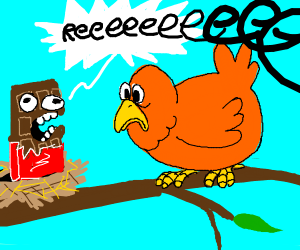 A bird looking at a yelling chocolate bar