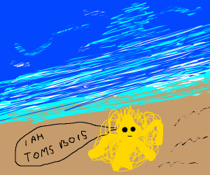 Deformed abomination named Toms bois at beach