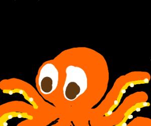 orange octupus