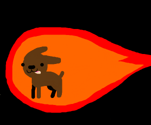 A dog in the middle of a fireball