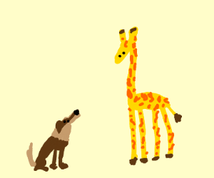 Dog next to giraaffee