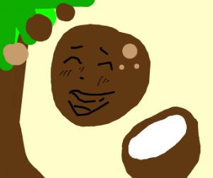 Coconut faces