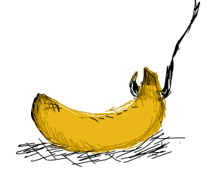 Banana Bait :)