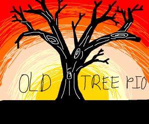 Old tree. Pass it on