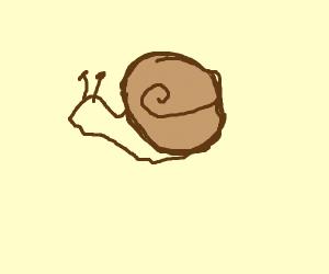 Slug from 10,000 B.C.