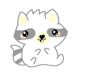 Happy little raccoon