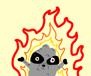 Racoon on Fire