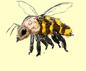 Its a bee