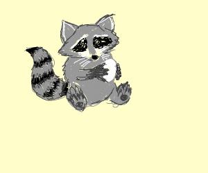 Raccoon holding an egg
