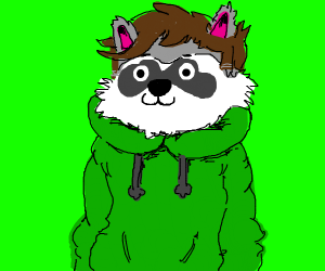 Raccoon Eddsworld