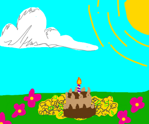 Chocolate cake in a flowery field