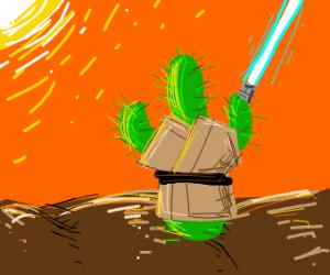 a cactus jedi