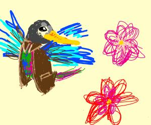 Hummingbird wearing a Coat