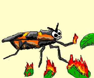 A psycho bug that loves burning things
