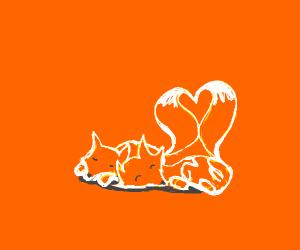 fox hugs