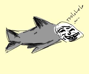 Shark Trolling