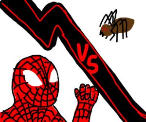 Spiderman vs a Spider