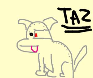 Robot dog named TAZ