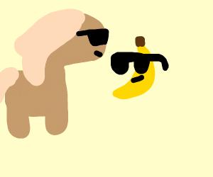 cool horse and cool banana wearing sunglasses