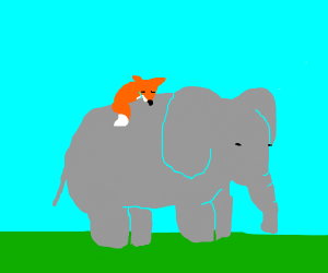 Fox and Elephant