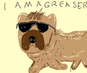 badass pug running