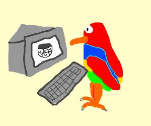 Parrot on Wikipedia