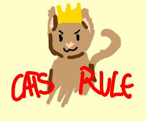 Cats Finally Rule