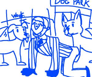 dog,,