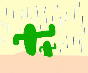 Tall cactus protects short cactus from rain