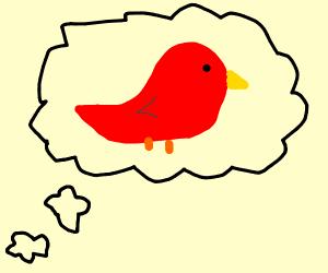 Thinkin bout' birds