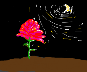 Flowers glow under the moonlight