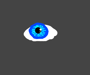 The Bluest Eye has no eyelids.