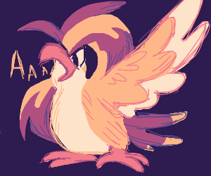 pidgeotto cawing