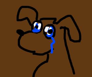 Sad doggo with no mouth