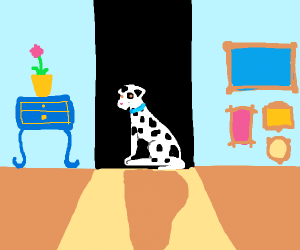 Dalmatian hiding in the back room