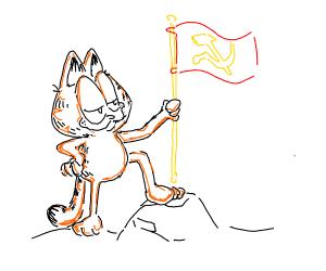 Orange Cat starts Socialist Revolution