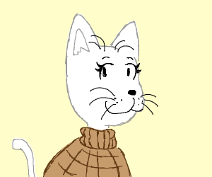 White cat with a sweater on