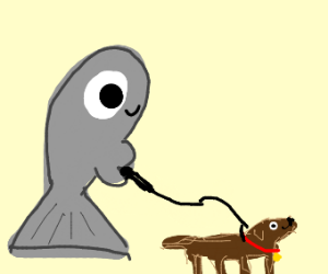 Gray Fish walks a Dog ♡