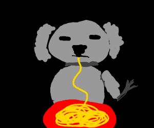 A koala eating pasta