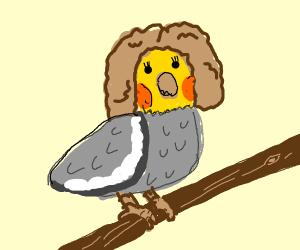 a female bird with a wig
