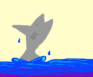 Left Shark - Drawception