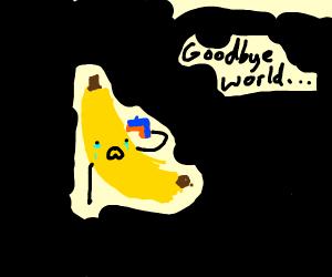 suicidal banana