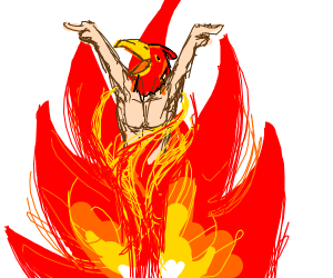 red bird comes out of fire