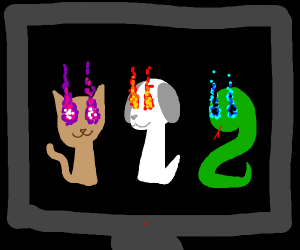 A snake, cat and a dog with weird eyes inatv