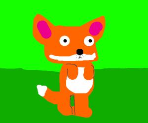 Cute Chubby fox?