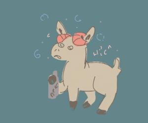 Drunk goat