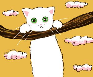 Cat poster: hang in there