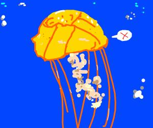 dissatisfied jellyfish