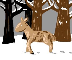A deer in the snow